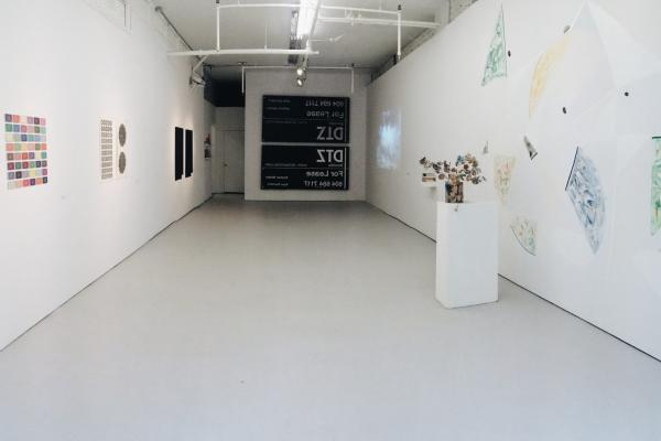 CASV Emerging Artist Prize Exhibition 2014, Access Gallery.