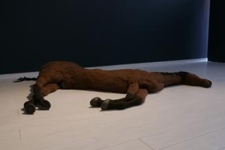 life sized horse made of felt laying on gallery floor.