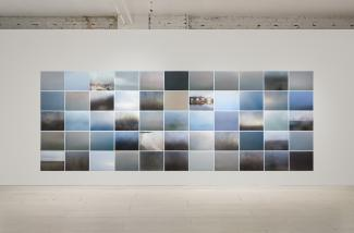 a large grid of five rows of eleven photographs by Karen Zalamea