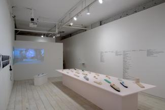 Installation view of sculptural objects and video in gallery space