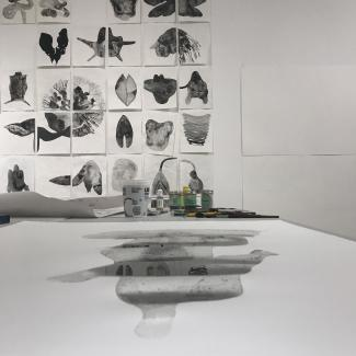 image of Genevieve Robertson's temporary studio at Access Gallery