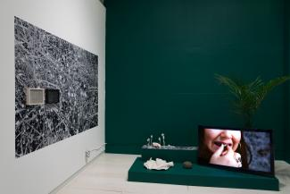 plants, a TV, and small ceramic sculptures installed on a low green plinth in front of a green wall.