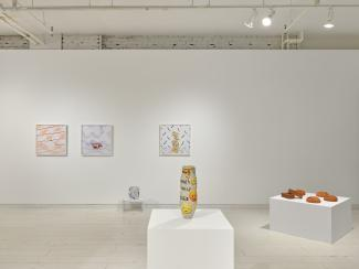 installation view of a gallery including ceramics and photographs